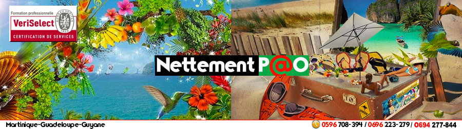 Nettement P@o-Centre de Formations  100 % Infographie - Martinique/Guadeloupe/Guyane